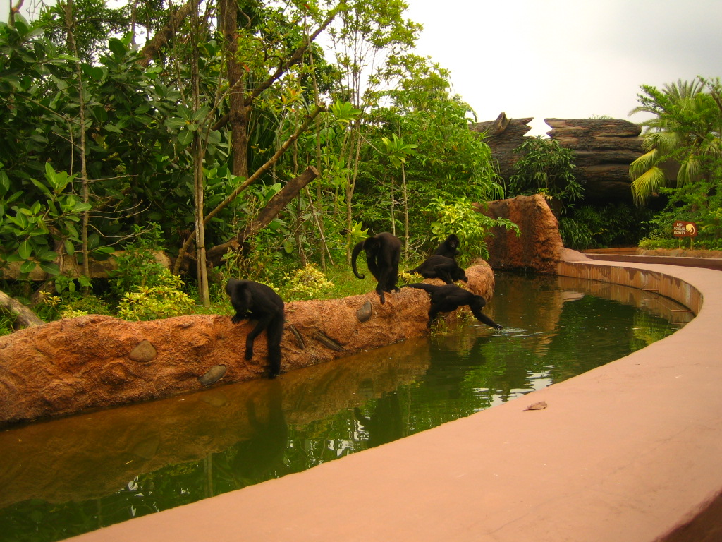 River Safari 025
